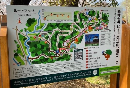 秦野市の森林セラピーロードに行ってきました