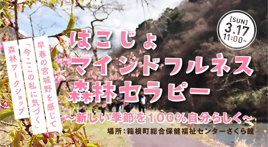 3/17(日)開催「はこじょマインドフルネス森林セラピー」授業のご案内