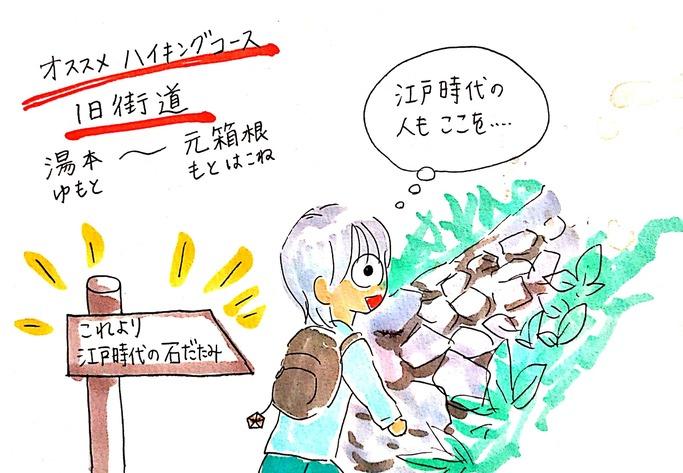 箱根オススメハイキングコース~旧街道と明神ヶ岳