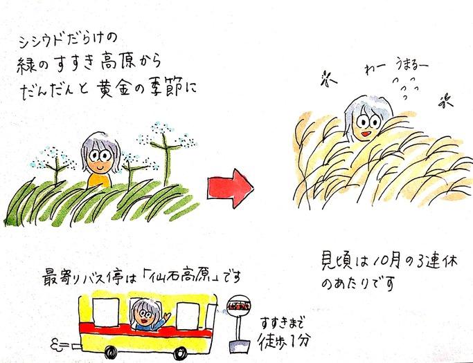 仙石原すすき高原から箱根外輪山ハイキングへ(前編)