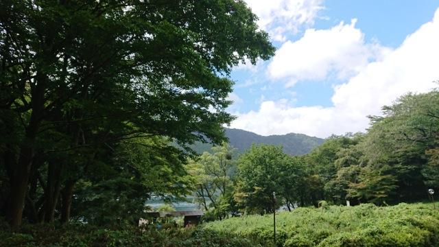 日本の森林 自然と人を繋ぐ香りを求めて 晩秋.〜9月8日開催、はこじょフォレストフィーリング 「夏の疲れをリセット 森ヨガと森林セラピー パワースポット箱根九頭龍神社の森に心と体を委ねて」 レポート〜