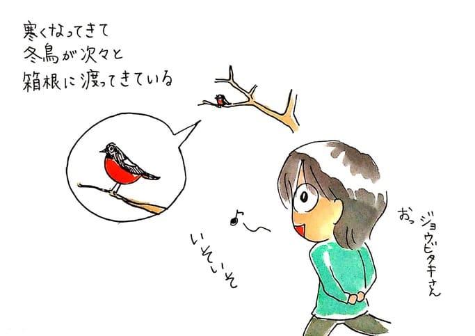 冬、箱根で見られる鳥たち