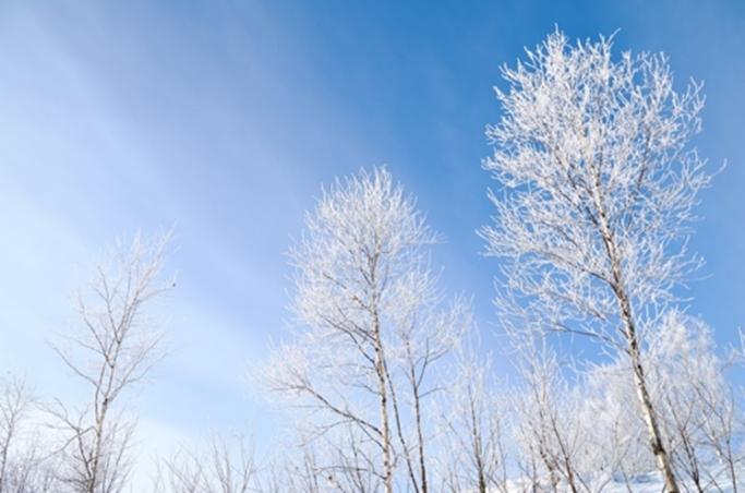 冬こそ代謝を上げよう。心身の健康に欠かせない体温を保つ方法