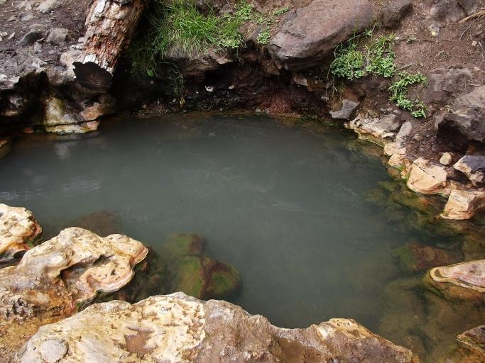 森林浴と組み合わせるもの〜温泉と神社仏閣〜