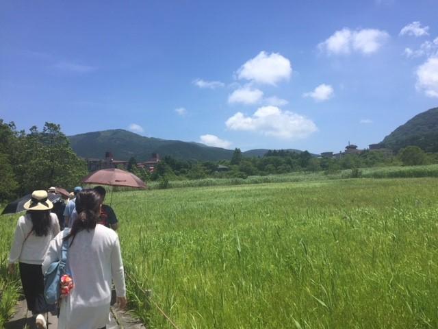 箱根町での森林セラピーを中心とした日帰りツアーを実施しました