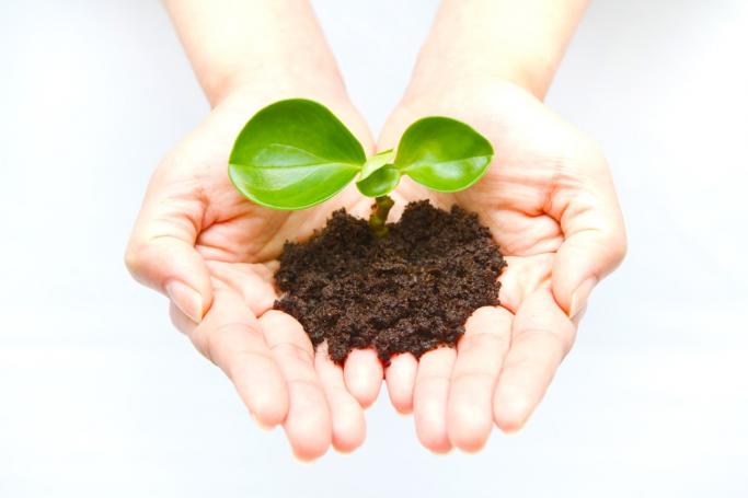 Love of Nature バイオフィリア仮説 〜花をめで、緑を育てる理由〜