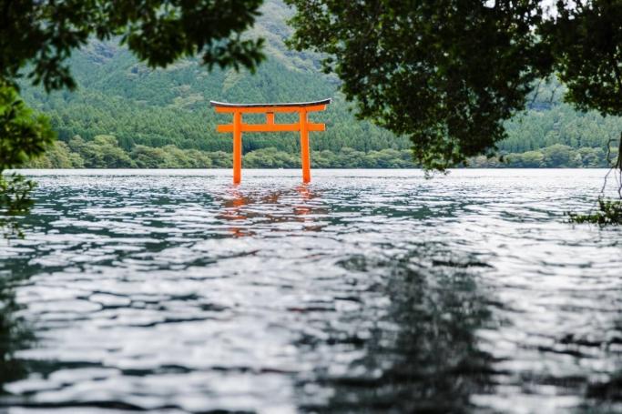 パワースポット九頭龍神社と森林セラピー