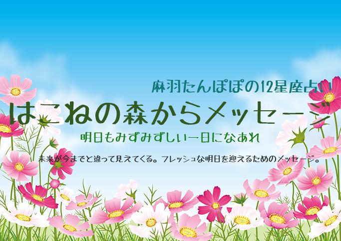 はこねの森からメッセージ ~和ハーブタロット星座別占い 10/26~11/1
