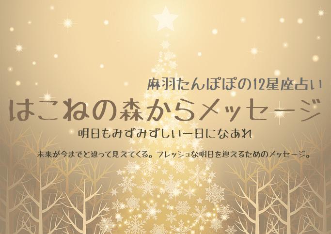 はこねの森からメッセージ ~和ハーブタロット星座別占い 12/28~1/3